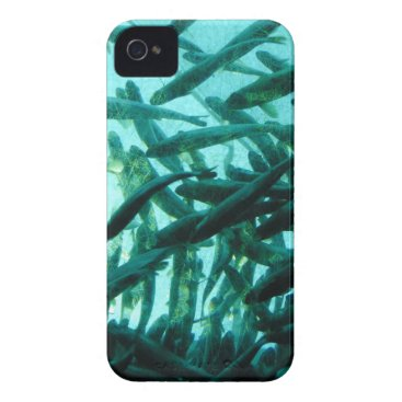 Beach Themed School of Fish Case-Mate iPhone 4 Case