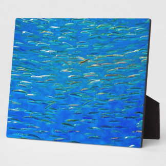 School of fish print with easel plaque