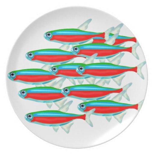 School of Neon Tetras Plate