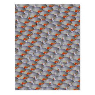 School of Piranhas pattern Postcard