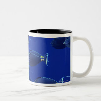 School of smooth-headed unicornfish Two-Tone coffee mug