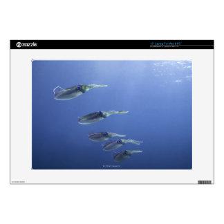 "School of squid in the Caribbean 15"" Laptop Skins"