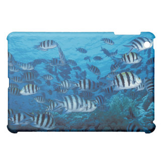 School of Striped Fish Cover For The iPad Mini