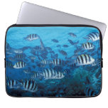 School of Striped Fish Laptop Sleeve
