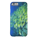 School of swimming bluelined snappers barely there iPhone 6 case