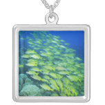 School of swimming bluelined snappers square pendant necklace