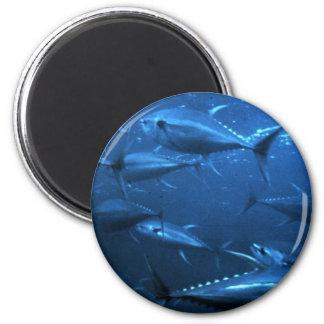 School of Yellowfin Tuna 2 Inch Round Magnet