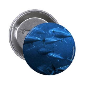 School of Yellowfin Tuna Pinback Buttons