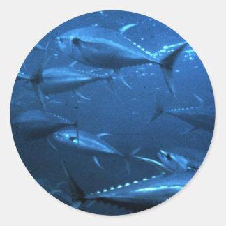 School of Yellowfin Tuna Classic Round Sticker