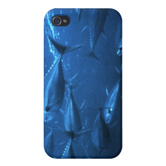 School of Yellowfin Tuna Covers For iPhone 4