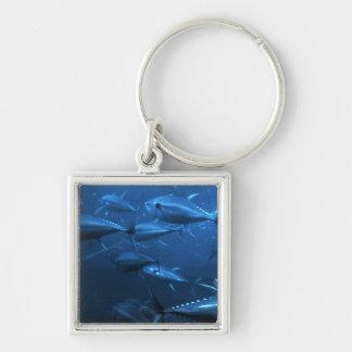 School of Yellowfin Tuna Silver-Colored Square Keychain