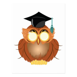 School Owl Postcard