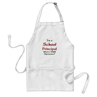School principal adult apron