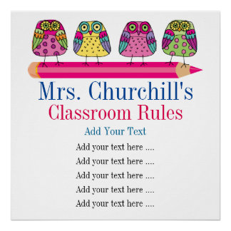 School Teacher's Classroom Rules Poster