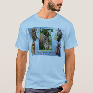 Schoolhorses of R&R Stables T-Shirt