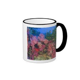 schooling Fairy Basslets  (Pseudanthias 4 Ringer Coffee Mug