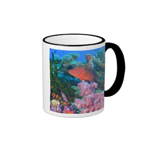 schooling Fairy Basslets  (Pseudanthias Ringer Coffee Mug