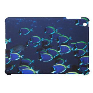 Schooling Powder Blue Surgeonfish iPad Mini Case