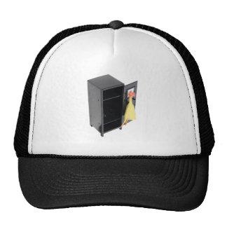 SchoolPranks110709 copy Hats