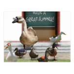 School's Out! Have a Great Summer, Little Ducks! Postcard