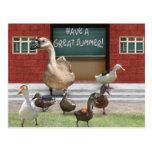 School's Out, Little Ducklings! Postcard