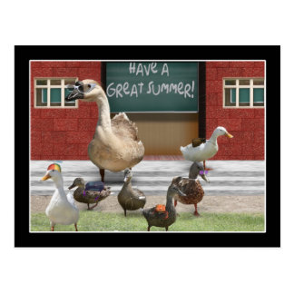 School's Out, Little Ducklings with Teacher Goose Postcard