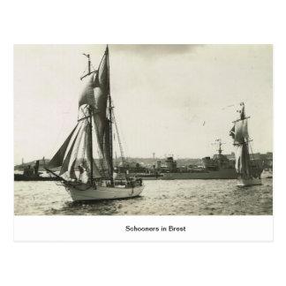Schooners in Brest Postcard
