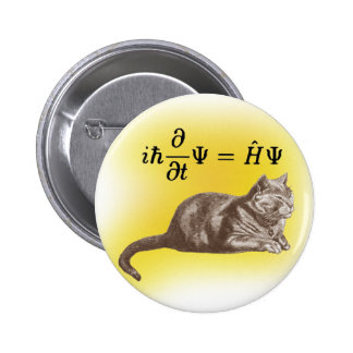 Schrodinger cat pinback button