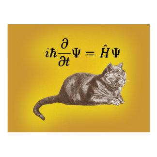 Schrodinger cat postcard