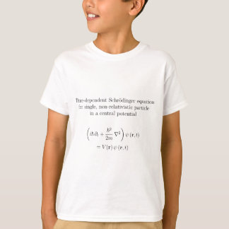Schrodinger equation, fine print T-Shirt