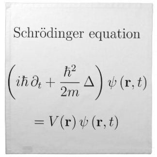 Schrodinger equation with name printed napkins