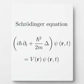 Schrodinger equation with name plaques