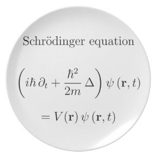 Schrodinger equation with name dinner plates