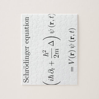 Schrodinger equation with name jigsaw puzzles