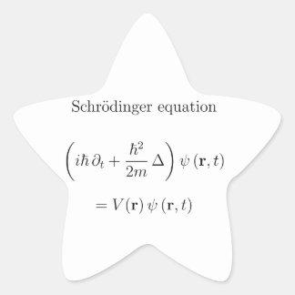 Schrodinger equation with name sticker