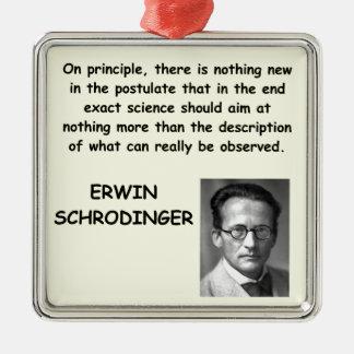 schrodinger quote ornaments