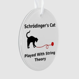 Schrödinger's Cat Played With String Theory
