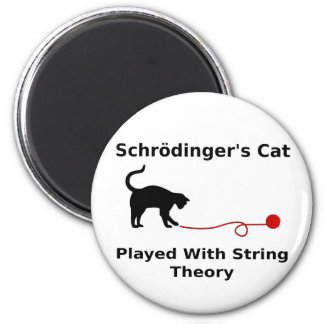 Schrödinger's Cat Played With String Theory Magnet