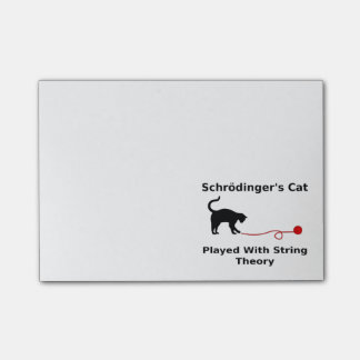 Schrödinger's Cat Played With String Theory Post-it® Notes