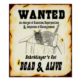 Schrodinger s Cat Wanted Poster