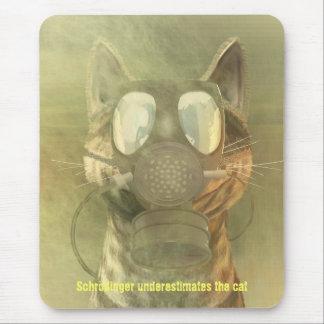Schrödinger subestima el mousepad del gato