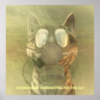 Schrödinger subestima el poster del gato