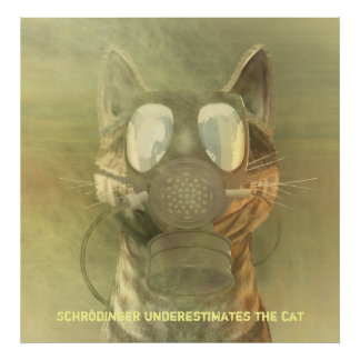 Schrödinger underestimates the cat poster