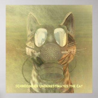 Schroedinger underestimates the cat poster