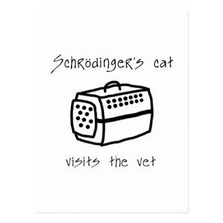 Schrodingers Cat Carrier Postcard