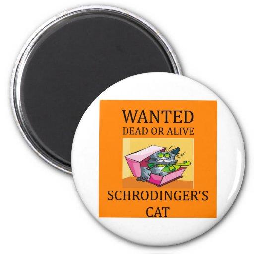 schrodinger's cat joke 2 inch round magnet