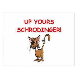 schrodinger's cat joke post card