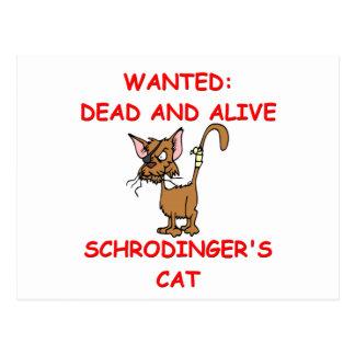 schrodinger's cat joke post cards