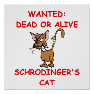 schrodinger's cat joke posters