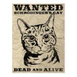 Schrodinger's cat wanted dead or alive postcards